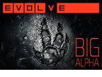 Evolve Big Alpha Beta Retrospective