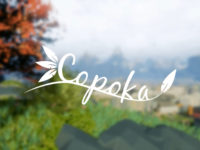 Review — Copoka