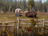 Far Cry 5's Ecology Is More Than Just Set Dressing