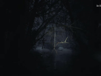 New Blair Witch Gameplay Shows How The Dog Will Play In