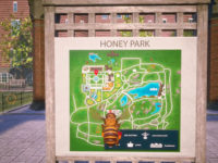 Discover The World Through The Eyes Of A Bee With Bee Simulator Now