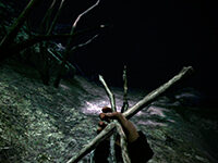Things Are Going Virtual Here Soon For Blair Witch